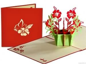 Popcards.nl pop up kaart Lichtgroen kistje roze bloemen