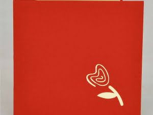 Donkergroene pot rode bloemen 2
