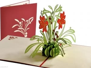 Popcards.nl pop-up card Light green pot red flowers red daffodil daffodils red