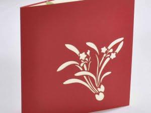 Lichtgroene pot rode bloemen 2