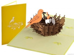 Popcards.nl pop up card nid d'oiseau