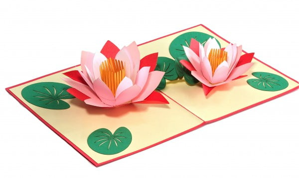 Popcards.nl pop up kaart lotus