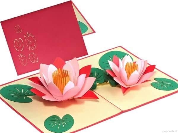 Popcards.nl pop up lotus card