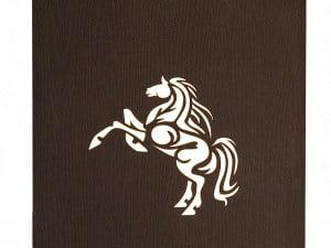koně 3