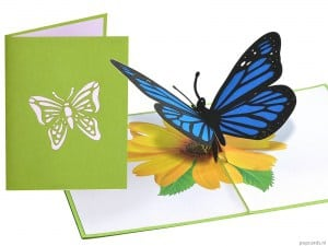 Popcards.nl farfalla pop up card