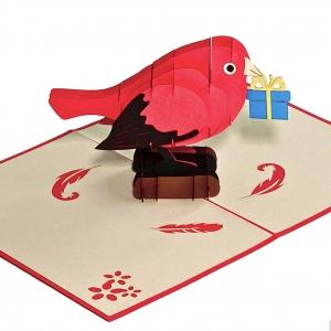 Popcards.nl pop up kaart vogel met cadeautje