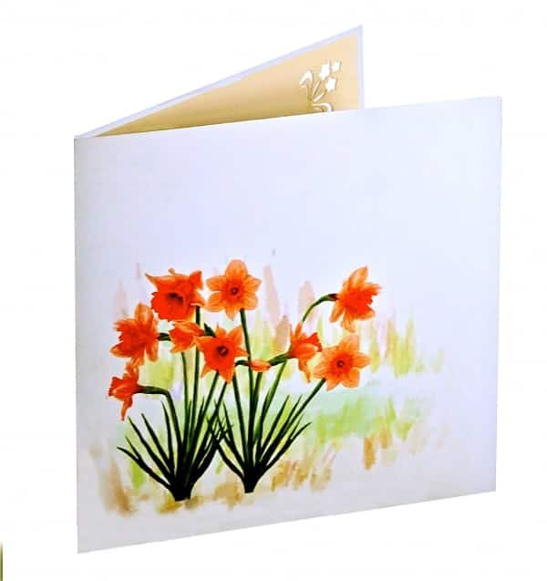 Narcissen met aquarel 2