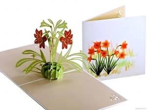 Popcards.nl pop up card Narcisos con acuarela