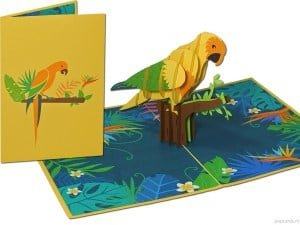 Popcards pop-up card parrot parakeet parrot-like collar parakeet greeting card