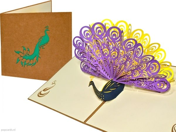 Popcards pop-up kort påfågel gratulationskort lika stolt som en påfågel