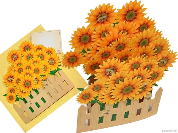 Cartoline pop-up card girasoli auguri giardino