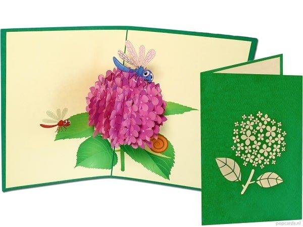 Popcards.nl pop-up kaart wenskaart hortensia lila paarse bloem bloemen