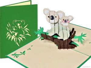 Popcards.nl pop-up kort lykønskningskort koala koala bjørne i træ Australien New Zealand