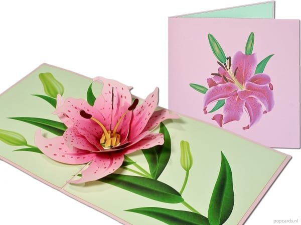 Popcards.nl pop-up card carte de voeux lily lily flower on green trunk