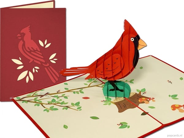 Popcards.nl carte pop-up carte de voeux oiseau rouge oiseau ornemental oiseau cardinal rouge