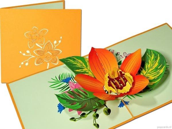 Popcards pop-up kaart bloeiende oranje orchidee bloemenkaart wenskaart orchideeën