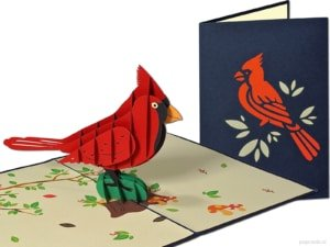 Popcards.nl pop-up card greeting card red bird ornamental bird red cardinal bird cardinal bird Cardinalis cardinalis songbird 3D card