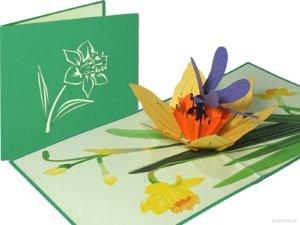 Popcards.nl felbukkanó kártya nárcisz szitakötő virág virágokkal nárcisz szitakötő üdvözlőkártya 3D-s kártya