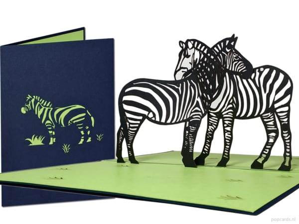 Popcards.nl pop up card zebra crosswalk zebra & #039; s Africa equid Equidae gratulasjonskort 3D-kort