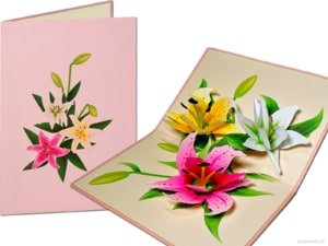 Popcards popup cards - 3 lilies white lily pink lily yellow lily flowers 3d card