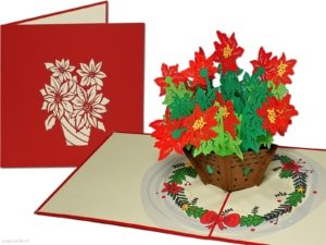 Pop cards popup cards - Christmas card Christmas star Christmas rose 3d card