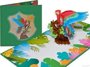 Popcards.nl pop-up card greeting card colorful parrot talking bird afterrater cockatoo are ornamental bird 3D card