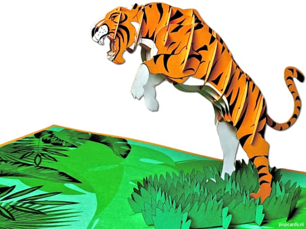 Pop cards popup cards - jumping tiger leopard panther cat feline attacks africa wilderness wild jungle jungle zoo 3d card