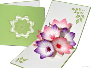 Popcards popup cards - flower card green purple pink flowers stamens 3d card