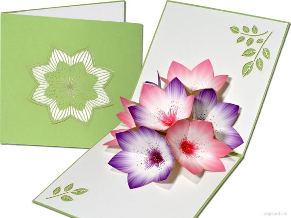 Popcards popup-kort - blommakort grönt lila rosa blommor stamens 3d-kort