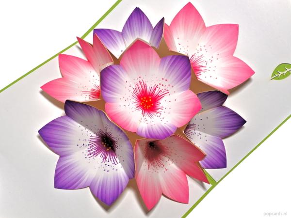 Popcards popup-kort - grön lila rosa blommor stamens 3d-kort