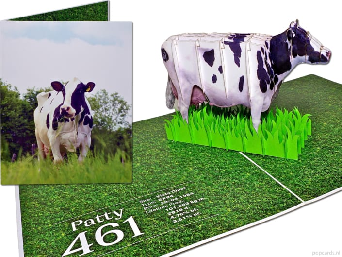 Popcards popup cards - cow patty greeting card 3d card