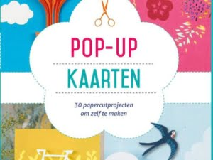 Buch Pop-up-Karten Emily Gregory 9789045319940 Vorderseite