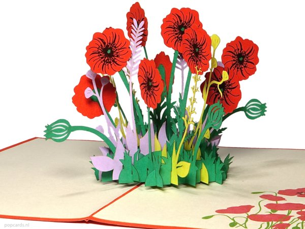 Popcards.nl pop up-kort valmue valmuer valmue roser blomster blomst blomst felt blomsterkort lykønskningskort 3D-kort