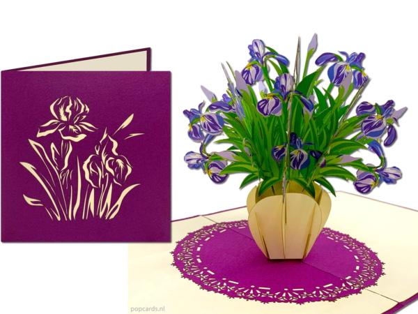 Popcards.nl pop up-kort blå lilla iris iris blomst egypten