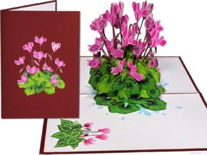 Popcards popupkaarten –Verjaardagskaart cyclaam Cyclamen Bloemen Vriendschap Felicitatie Beterschap Troostwenskaart 3d kaart